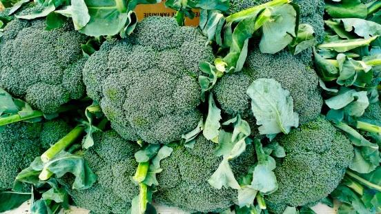 """Super"" Broccoli Lowers LDL Cholesterol"