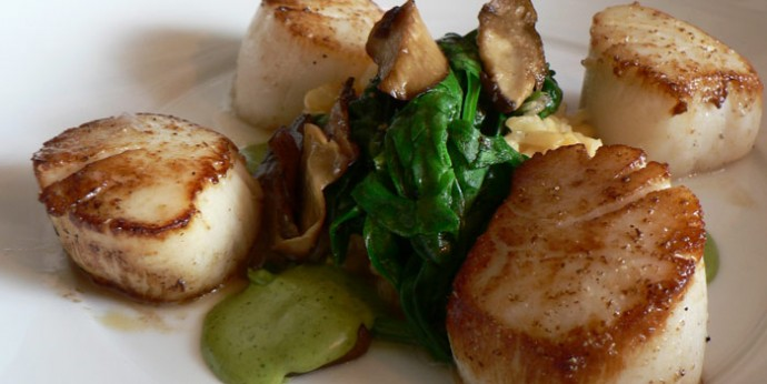 Scallops -Healing Food Facts