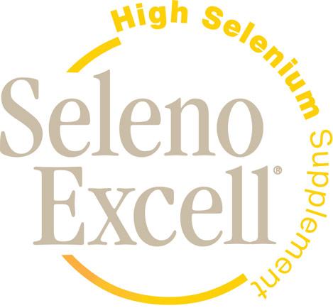 SE_logo_469