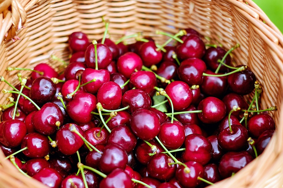 cherries-1453333_960_720
