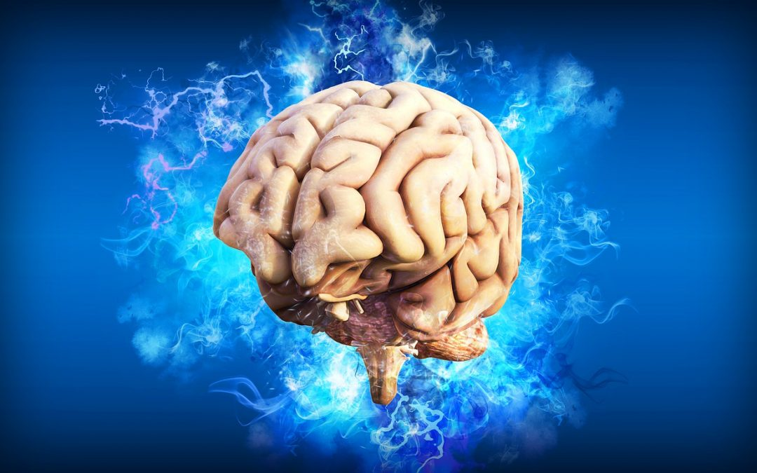 Huperzine A: An Underappreciated Solution to the Aging Brain